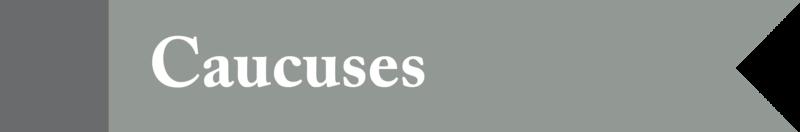 Medium_caucuses