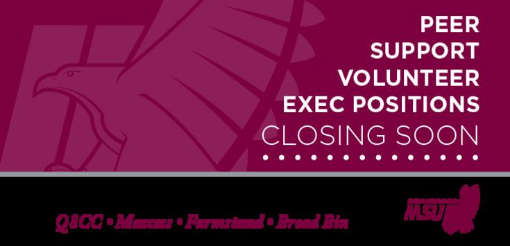Banner_volunteer_exec_hiring_msuwebsite