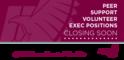 Small_volunteer_exec_hiring_msuwebsite