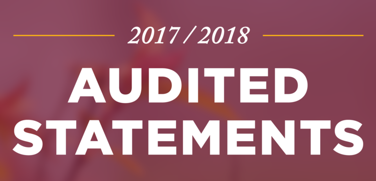 Banner_audited_statements_homepage