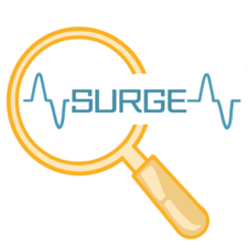 SURGE (Stimulating Undergraduate Research and Growth through community Engagement)