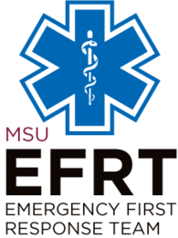 Small_efrt-logo-colour