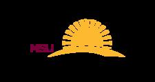 Small_horizons-logo